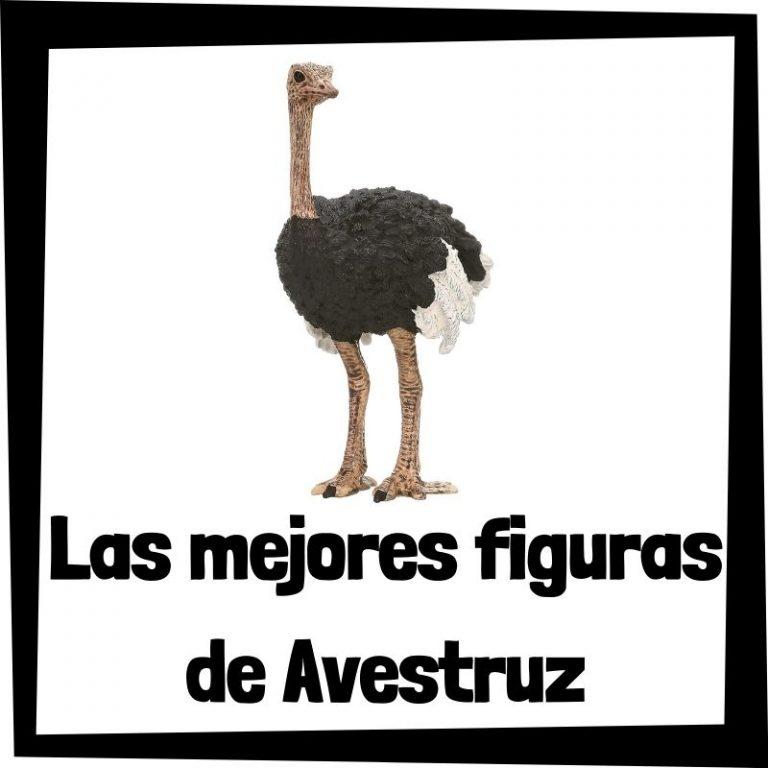 Lee más sobre el artículo Figuras de Avestruz