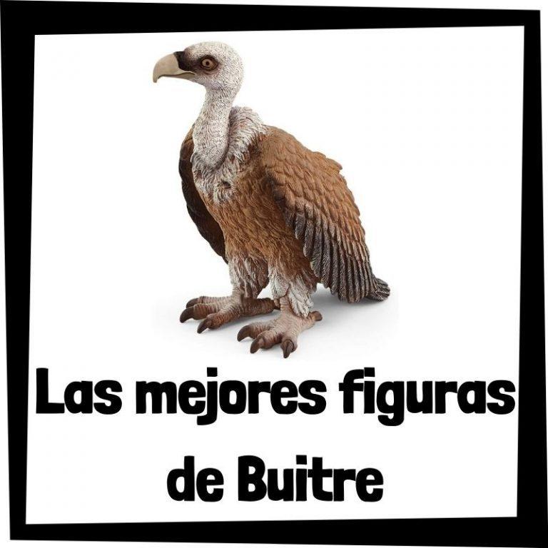 Lee más sobre el artículo Figuras de Buitre