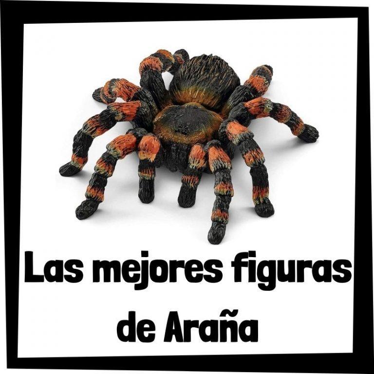 Lee más sobre el artículo Figuras de Araña